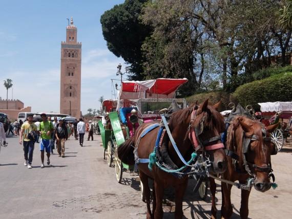 Souks Marrakech (1)