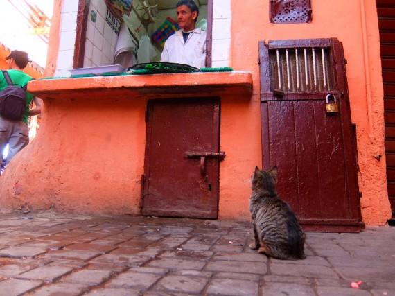 Souks Marrakech (13)