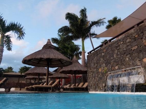 Palm Réunion (50)