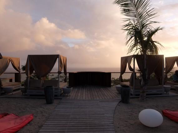 Palm Réunion (51)
