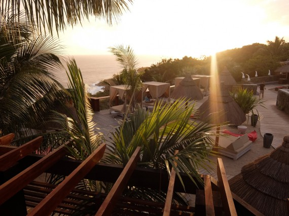 Palm Réunion (55)