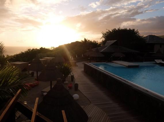 Palm Réunion (59)