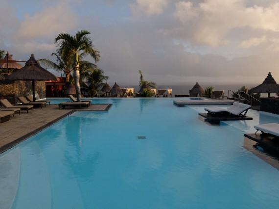 Palm Réunion (61)