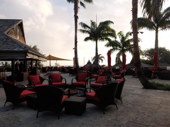 Palm Réunion (63)