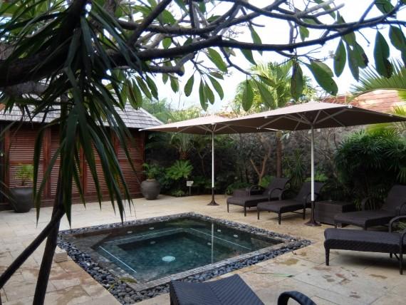 Palm Réunion (66)