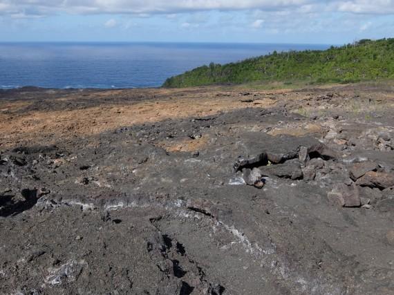 4x4 Reunion volcan et sud (15)