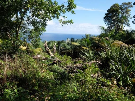 Itinéraire 1 semaine à La Réunion (19)