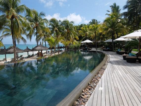 Maurice Royal Palm (4)