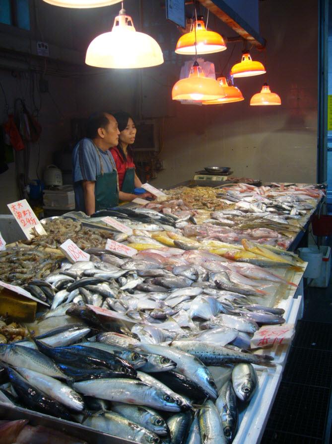 Marche des poissons