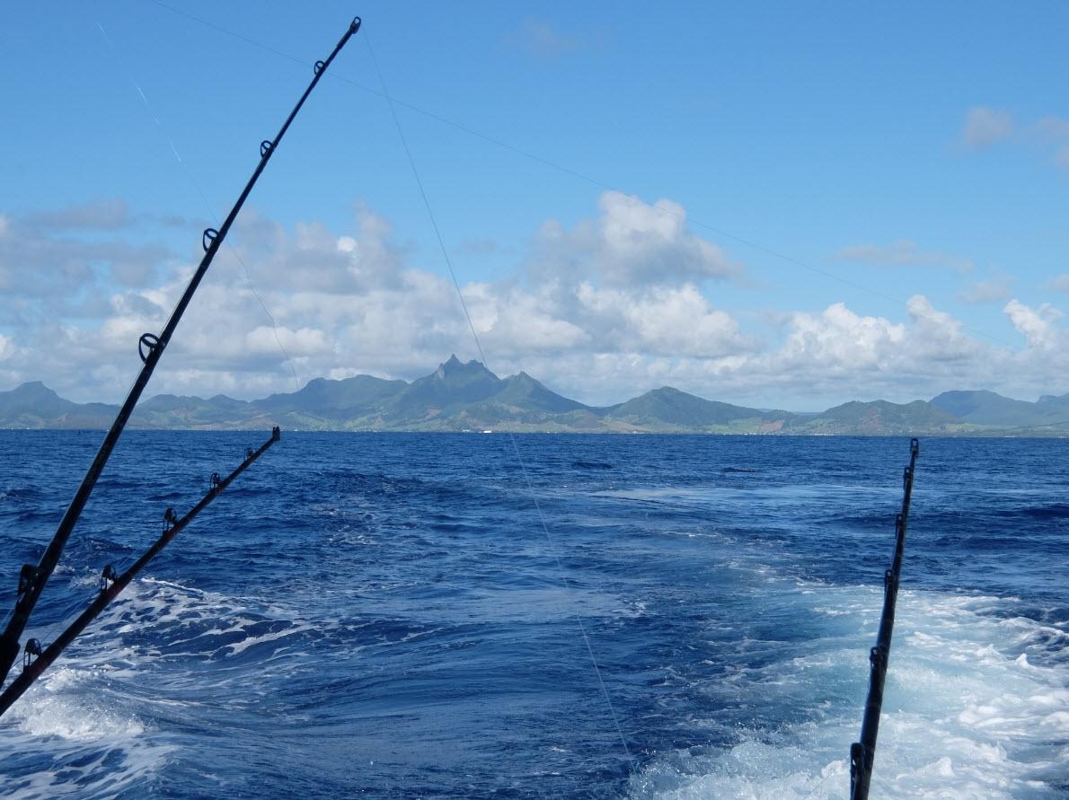 Big game fishing mauritius
