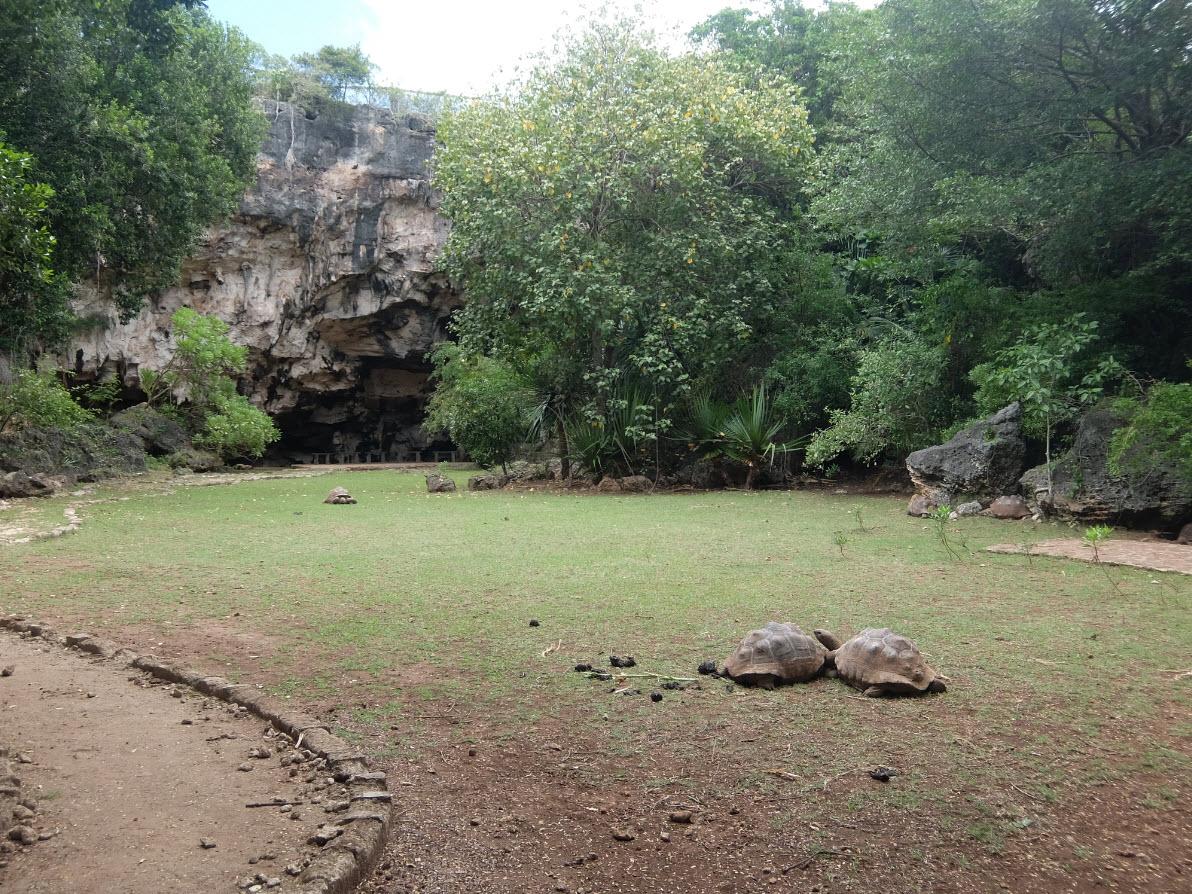 Grand espace de la reserve