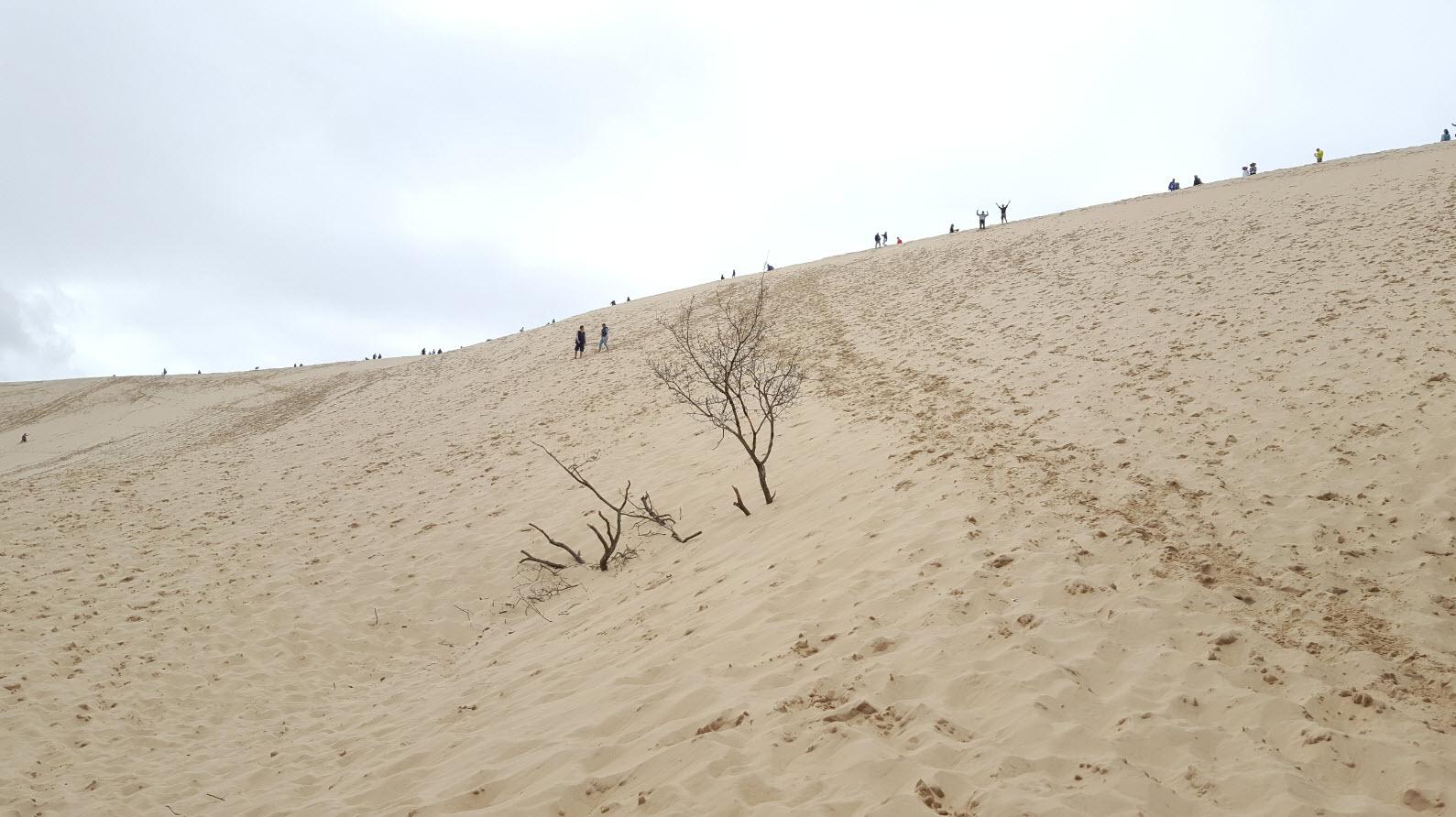 Au pied de la dune du pyla