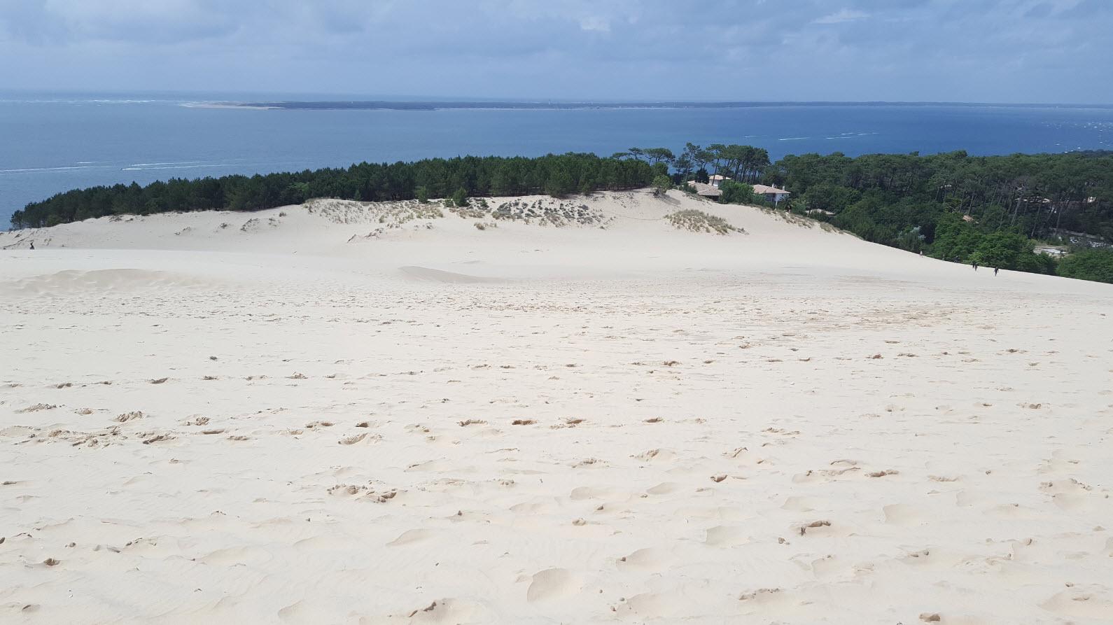 Vue depuis le sommet de la dune