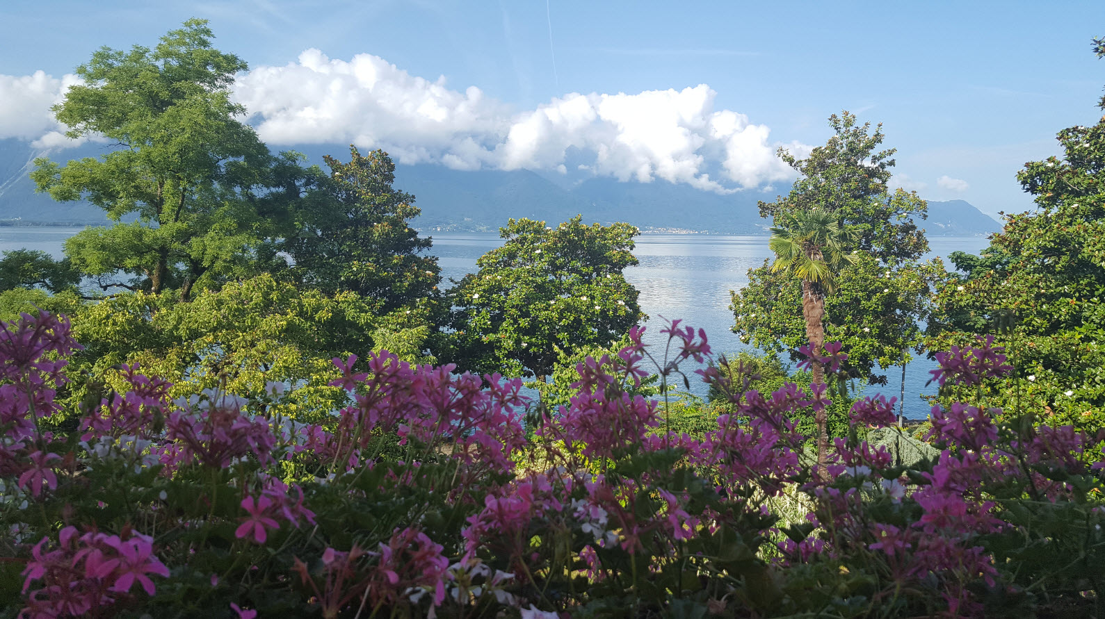Vue sur le lac Leman