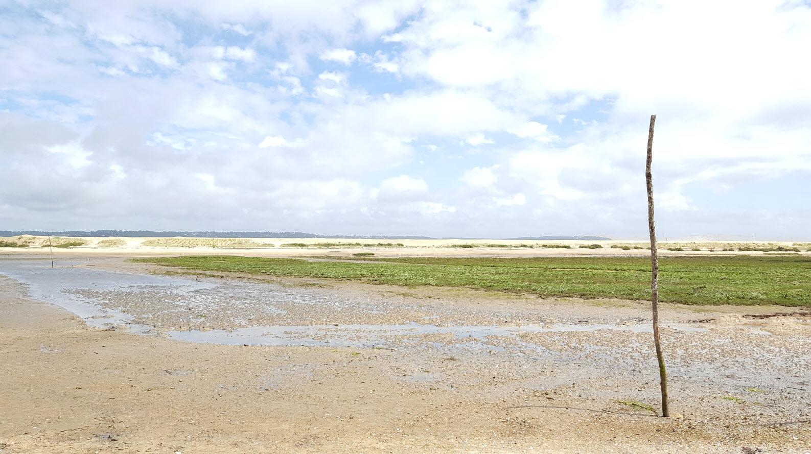 Maree basse Cap Ferret
