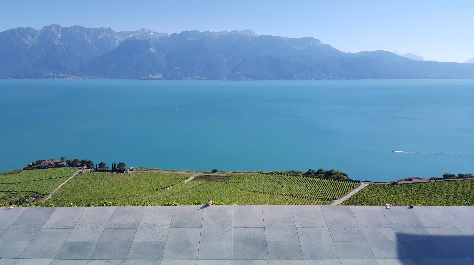 Terrasse panoramique dans le Lavaux