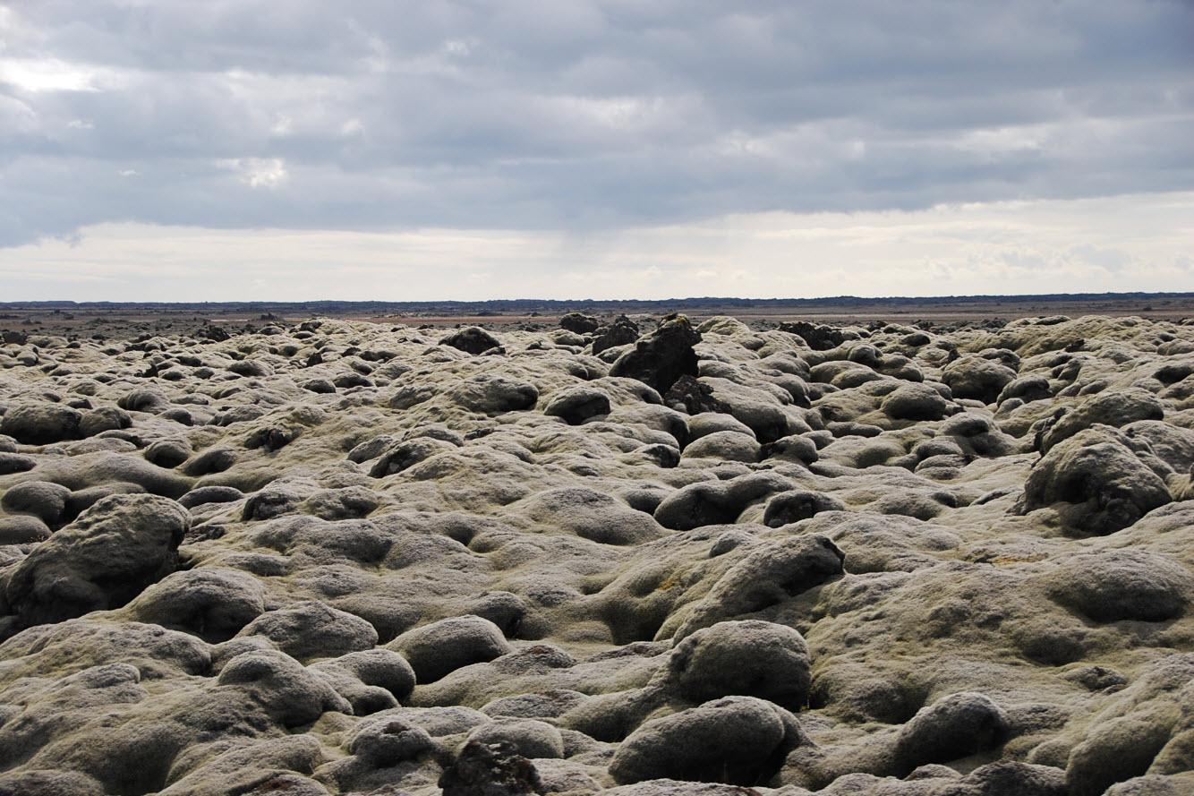 Itineraire tour Islande champs de mousse