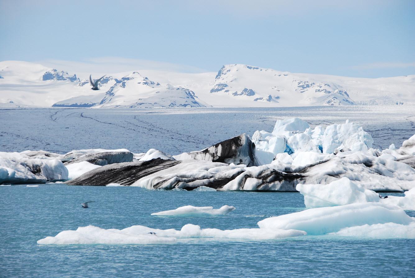 Itineraire tour Islande icebergs de Jokulsarlon