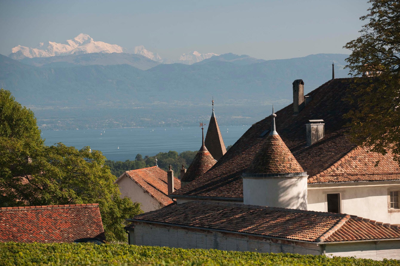 dormir_dans_les_vignes-france-chateau_le_rosey