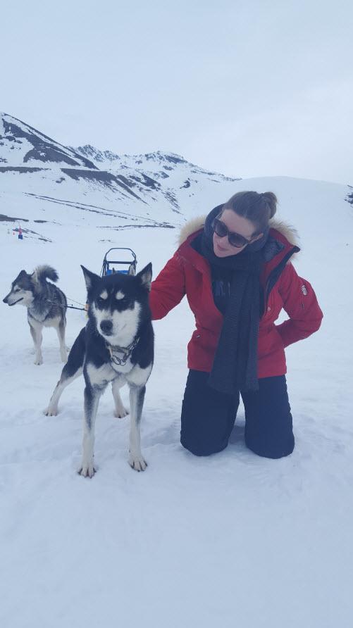 Mes chiens et moi
