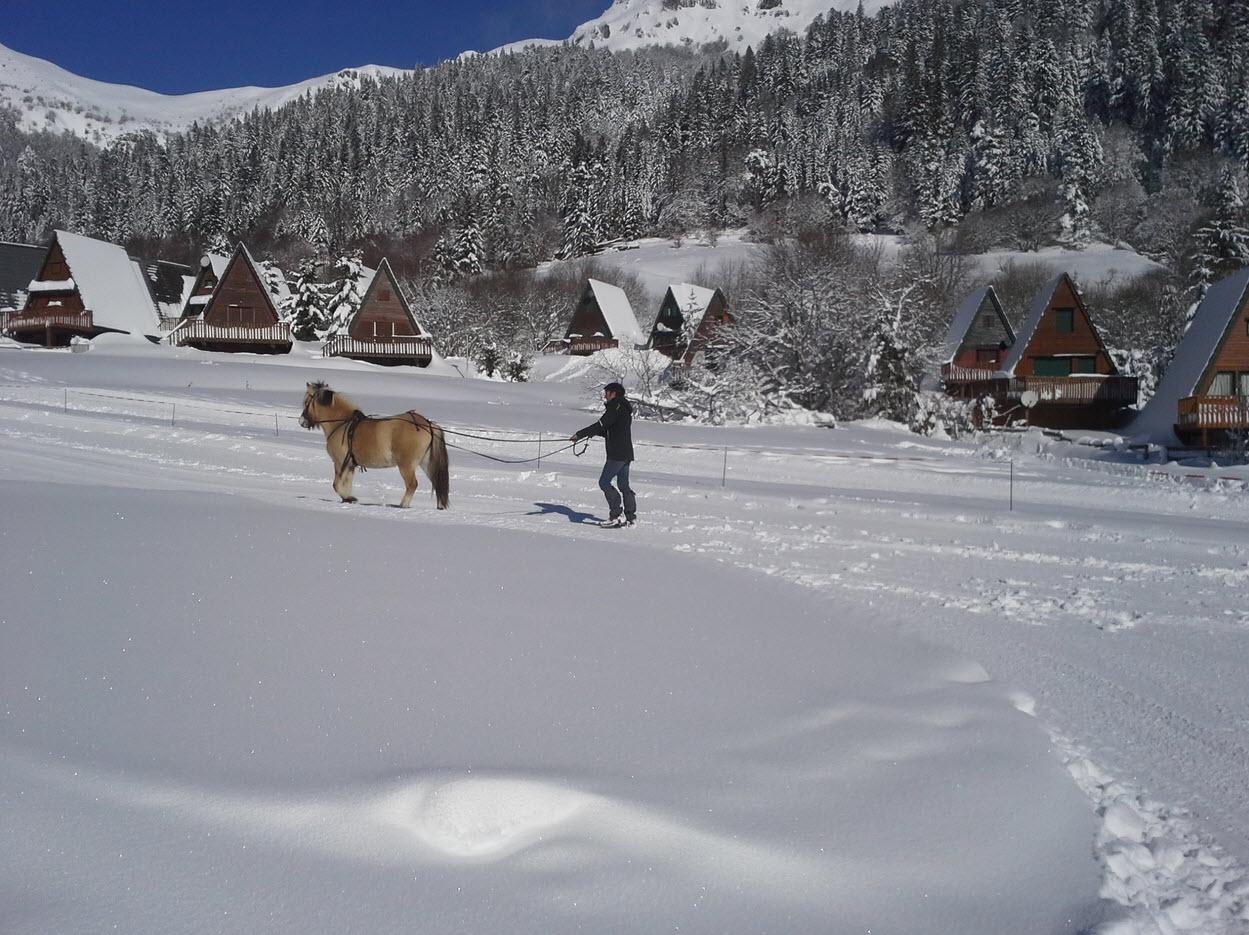 ski-joëring Lioran