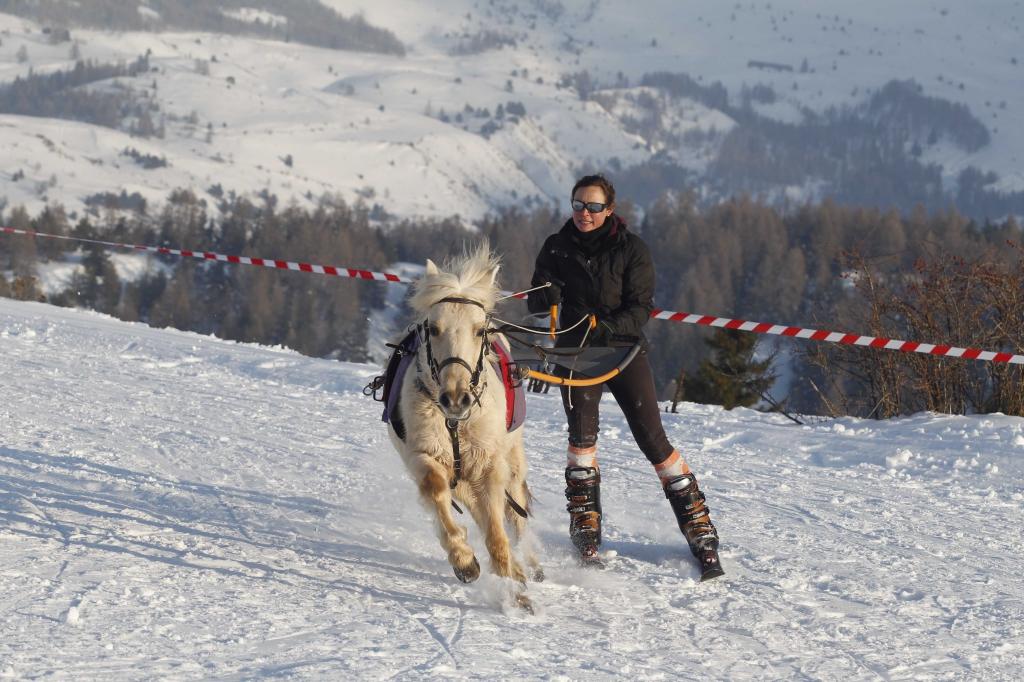 ski-joëring Devoluy