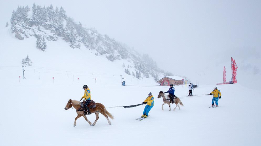ski-joëring Villars sur Ollon
