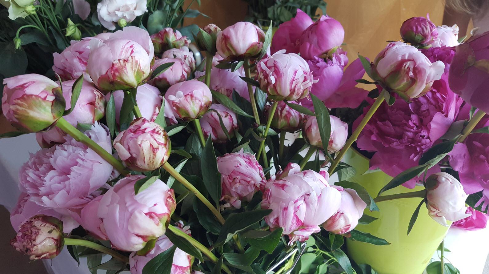 Fleurs fraiches