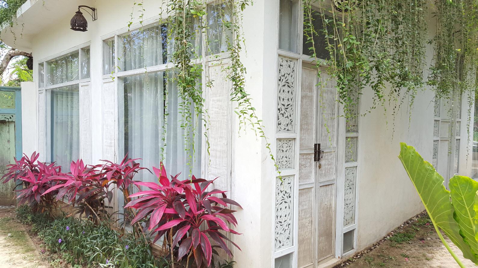 Chambre Tropical 5