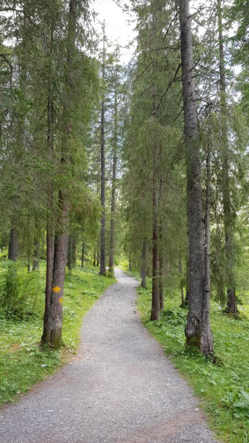 Balade facile famille Oberland Bernois