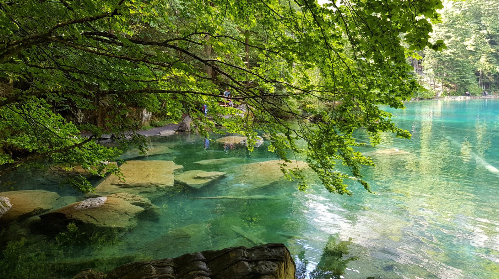 Lac transparent Suisse