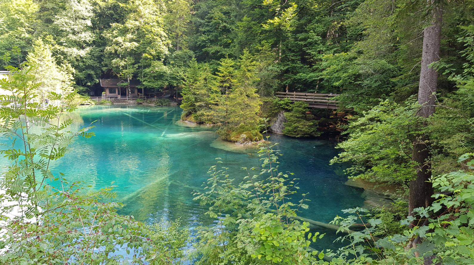 Blausee plus beaux lacs de Suisse