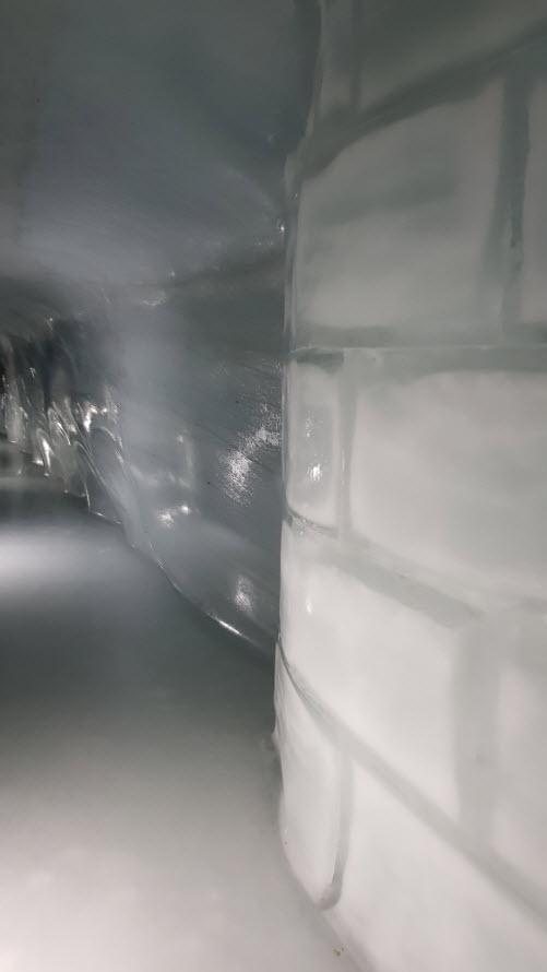Grotte glace Jungfrau