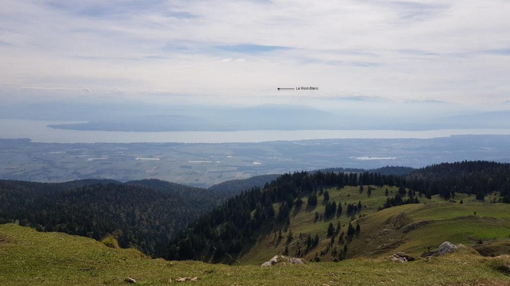 Point de vue Mont Blanc