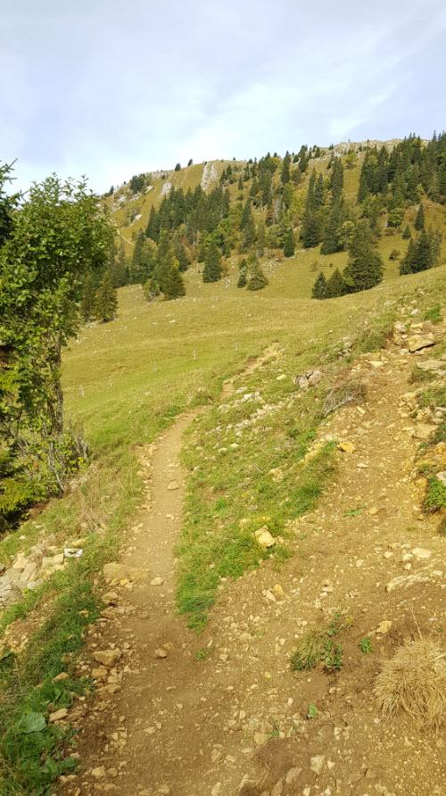 Balade facile Canton Vaud