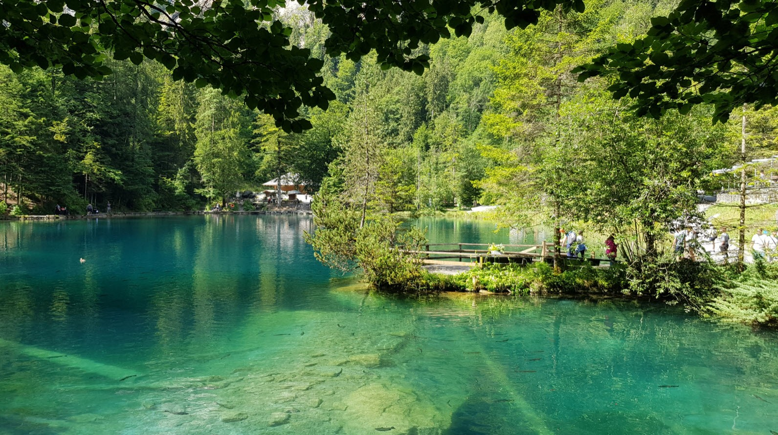 Lac transparent Suisse