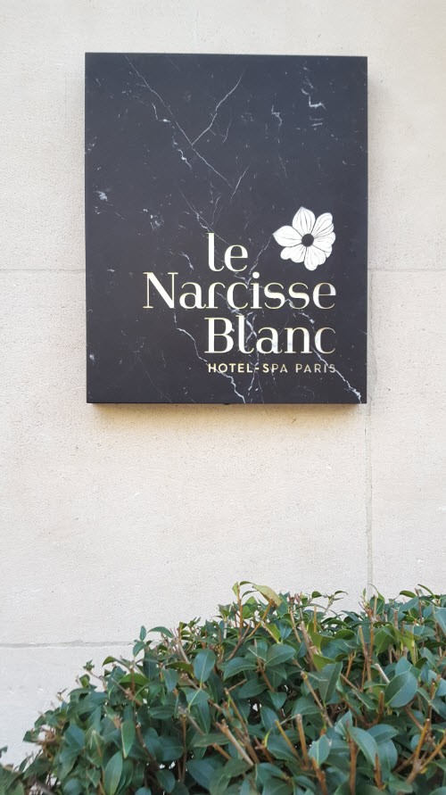 Narcisse Blanc Paris