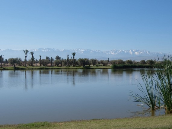Weekend Marrakech (10)